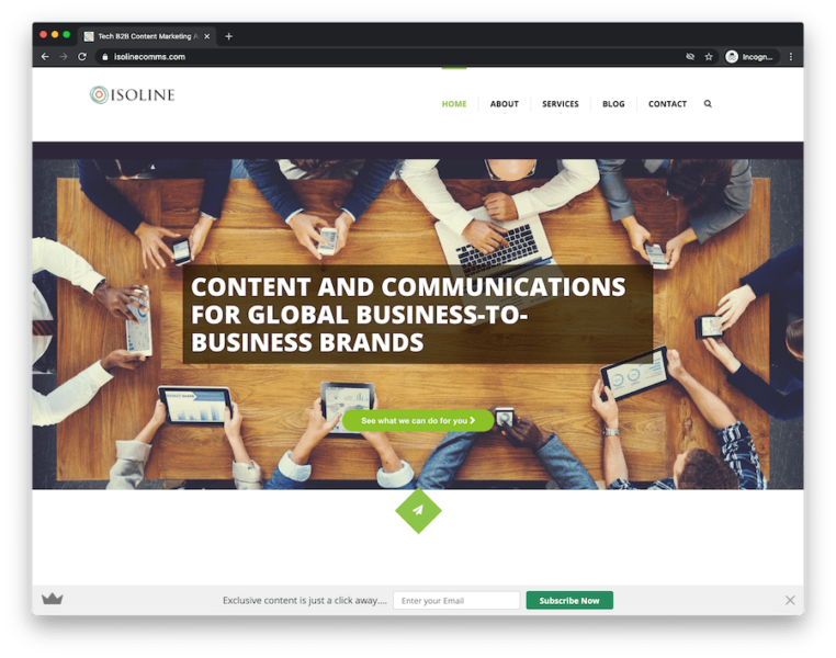 home page of b2b content marketing agency isoline