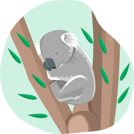 illustration of a koala sleeping in between branches