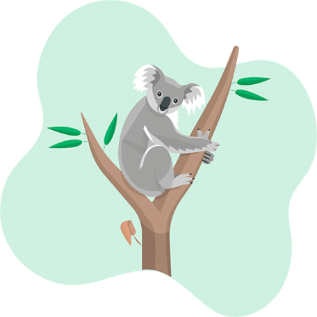 illustration of a koala in the middle of two tree branches
